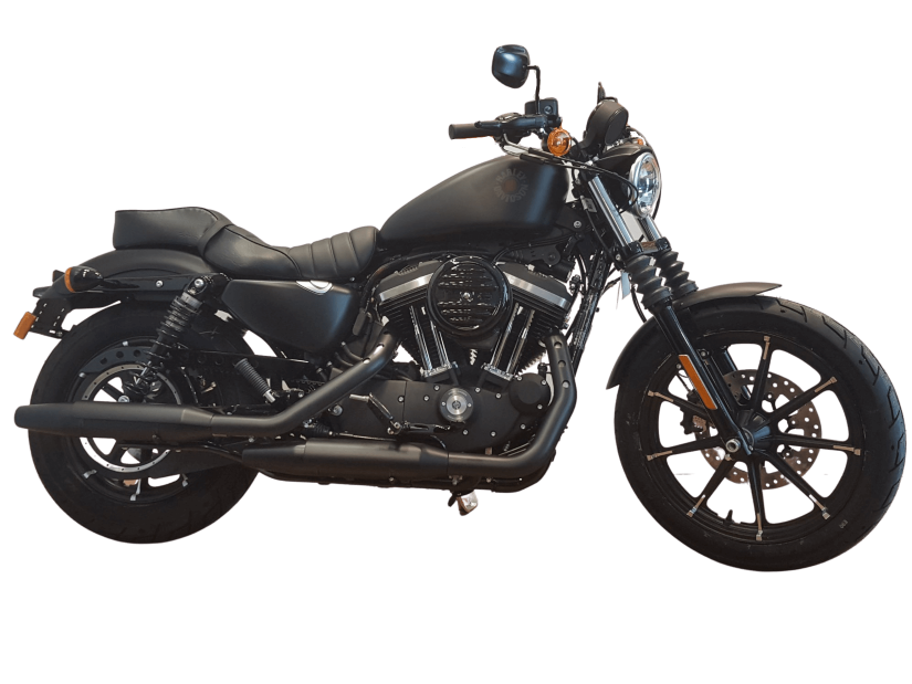 H-D ALICANTE - IRON883BD