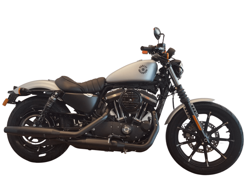 H-D ALICANTE - IRON883BS